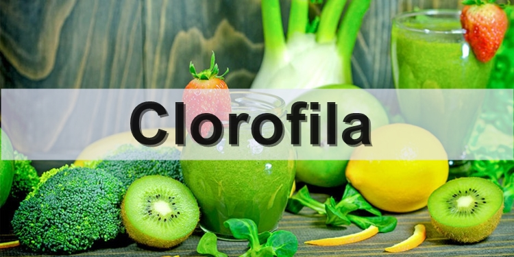 beneficios da clorofila