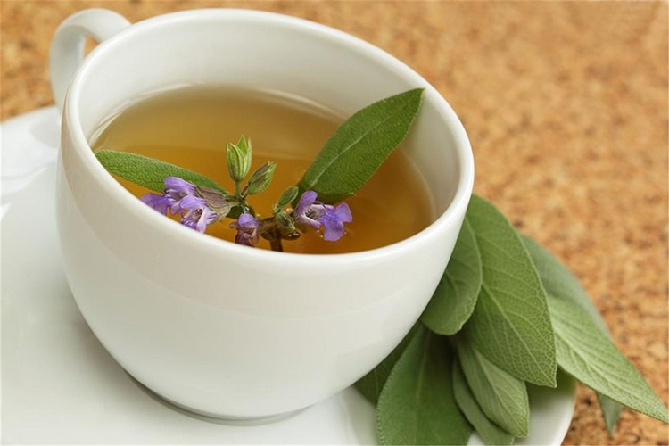 receita do cha de salvia